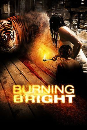 Kẻ Giết Cọp - Burning Bright
