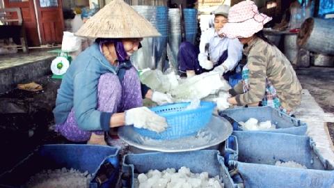 Người dân Quảng Ngãi làm bánh nổ bằng nếp tiến vua bán Tết