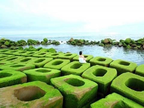 Những khối bê tông xanh dịu dàng trước biển
