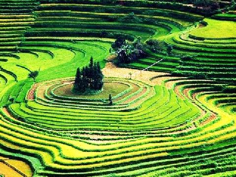 Việt Nam cứ đẹp đến mê say