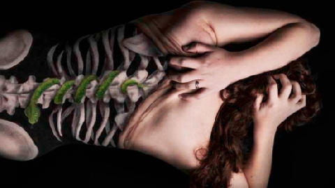 Nghệ thuật vẽ 3D lên cơ thể làm 'xoắn não' người xem