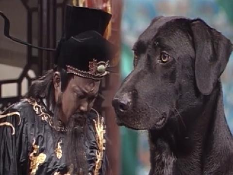 Đến chó mà Bao Công cũng hỏi cung được, còn điều gì cản phá vị quan này
