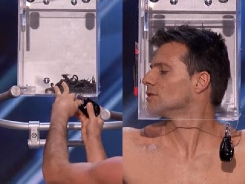 Nín thở xem thí sinh Got Talent thoát khỏi chiếc hộp đầy bọ cạp