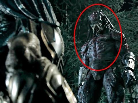 'The Predator' gây khiếp đảm với loài quái vật giết người như ngóe