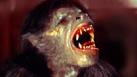 Huyền sử đáng sợ về NGƯỜI SÓI đã được kể trong lịch sử loài người !!