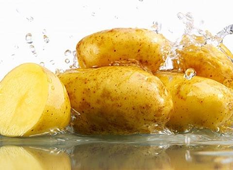 Sự quyến rũ của những củ khoai tây
