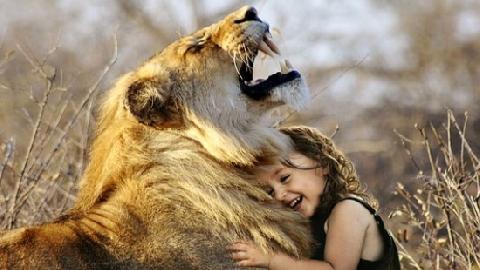 Du khách bất ngờ bị sư tử nhảy chồm lên người, âu yếm liếm mặt