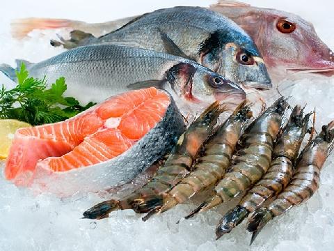 Thử ăn hải sản sống để sinh tồn