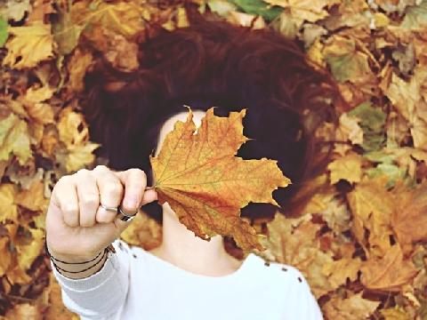 Tấm thiệp gửi mùa thu