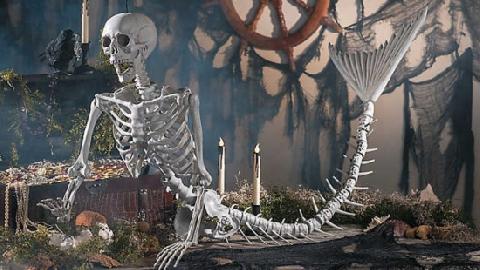 Rùng mình vụ buôn lậu 50 bộ xương người trong vali