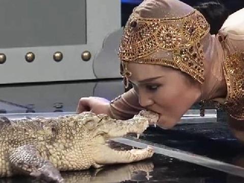 Điều gì sẽ xảy ra khi mĩ nữ hôn cá sấu