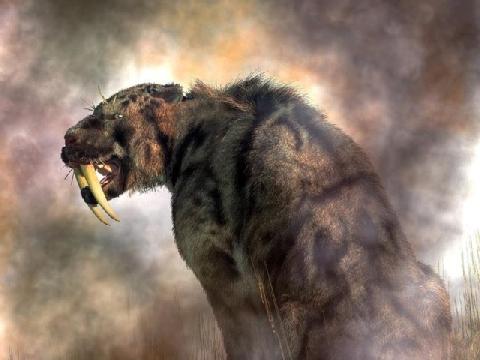 Con người sẽ ra sao nếu hổ răng kiếm chưa tuyệt chủng