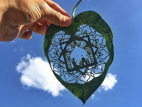 Bạn có bị rung động bởi những chiếc lá này không?
