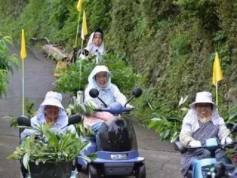 Ngôi làng không rác ở Nhật Bản