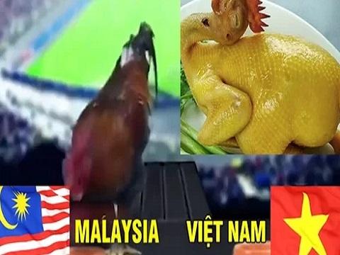 'Thần kê' bị luộc vì đã chọn Malaysia thắng Việt Nam