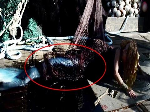 Phim kinh dị về 'Nàng tiên cá' bị chặt đuôi tung trailer lạnh sống lưng