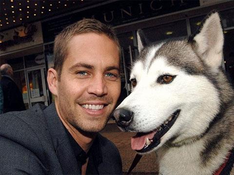 Xem lại cảnh Paul Walker và đàn chó Husky vượt bão táp nước mắt lại rơi
