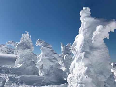 ''Quái vật tuyết'' đáng sợ vì mưa siêu lạnh
