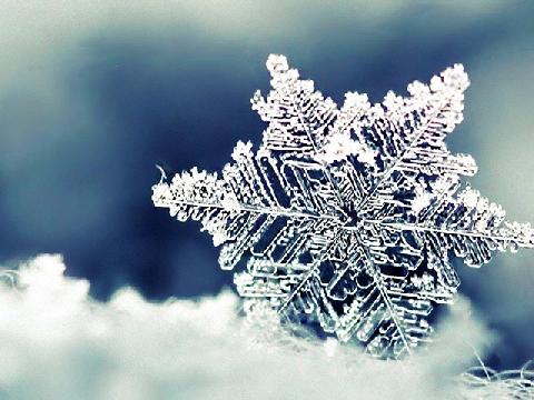 Tự làm hoa tuyết bằng giấy cho đêm Giáng sinh