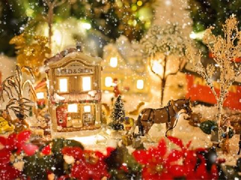 Nếu muốn Giáng sinh lộng lẫy, hãy thử xem video này