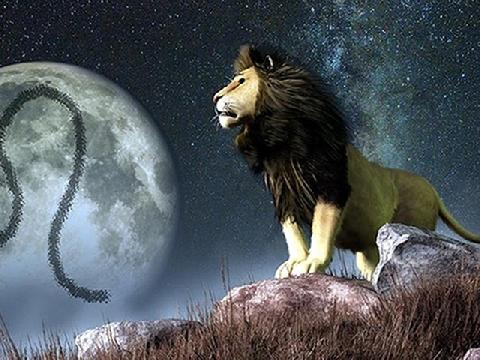 Tử vi cung Sư tử năm 2020