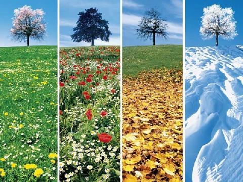 Tại sao một năm có 4 mùa?
