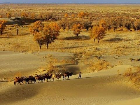 Sa mạc đẹp ná thở ở Trung Quốc