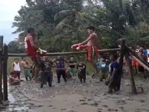 Chết cười với màn đấu boxing trên xà đơn giữa ruộng