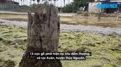 Phát hiện 13 cọc gỗ nghi thuộc trận Bạch Đằng năm 1288 trong lúc đào ao