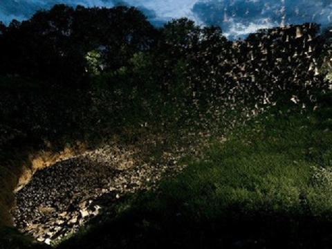 Lốc xoáy côn trùng