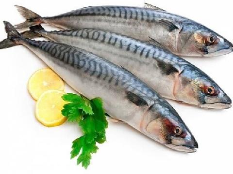 Tất tần tật mẹo hay khi chế biến đồ ăn từ cá