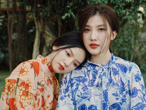Lương Thanh, Hạ Anh dinh nghi án yêu đồng giới