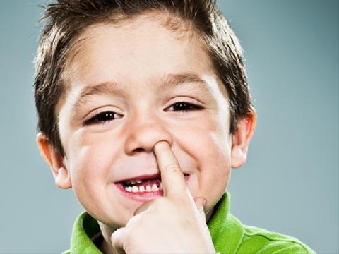 Ăn gỉ mũi tốt cho sức khỏe?