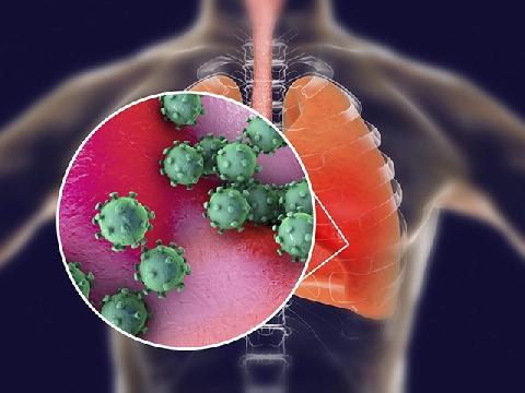 Phổi bị xâm nhập như thế nào khi bị nhiễm nCoV?