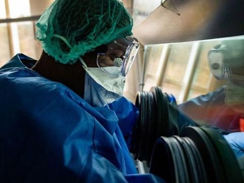 5 dịch bệnh kỳ lạ từng khiến các nhà khoa học phải đau đầu