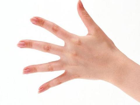 Vì sao bàn tay con người có 5 ngón?