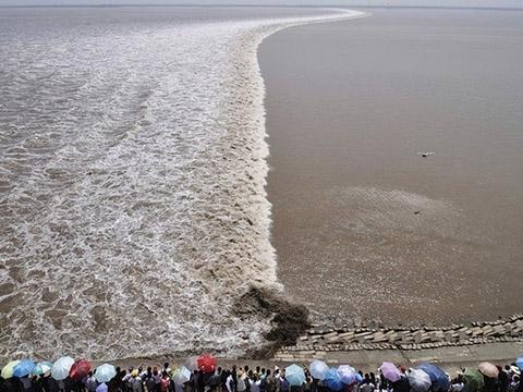Khám phá: Con sóng dài nhất thế giới siêu độc lạ