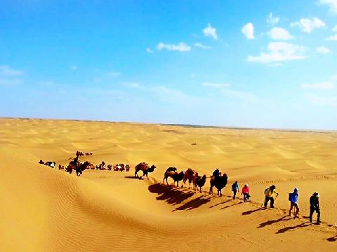 Taklamakan - Sa mạc đi dễ khó về