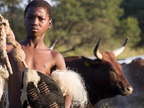 Bạn nghĩ đàn ông không thể bị kiểm tra trinh tiết? Hãy xem bộ tộc kỳ lạ này làm điều đó ra sao!