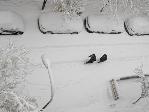 Tây Ban Nha- Tuyết rơi dày chưa từng có trong 50 năm qua