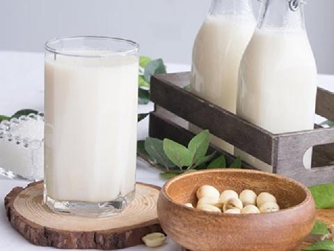 Cách làm sữa hạt sen siêu bổ dưỡng